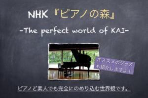 ピアノの森 一色まこと NHK アニメ 映画 漫画 世界観 ピアノが好きになる