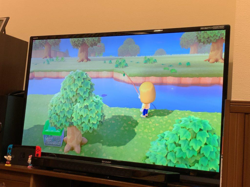 あつまれ どうぶつの森 任天堂 スイッチ Nintendo Switch 年齢 楽しみ方 複数人同時プレイ マルチプレイ