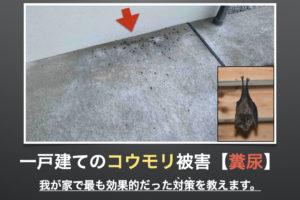 蝙蝠 コウモリ 駆除 被害 害獣 糞尿 対策 動物駆除装置 超音波 ストロボ 効果